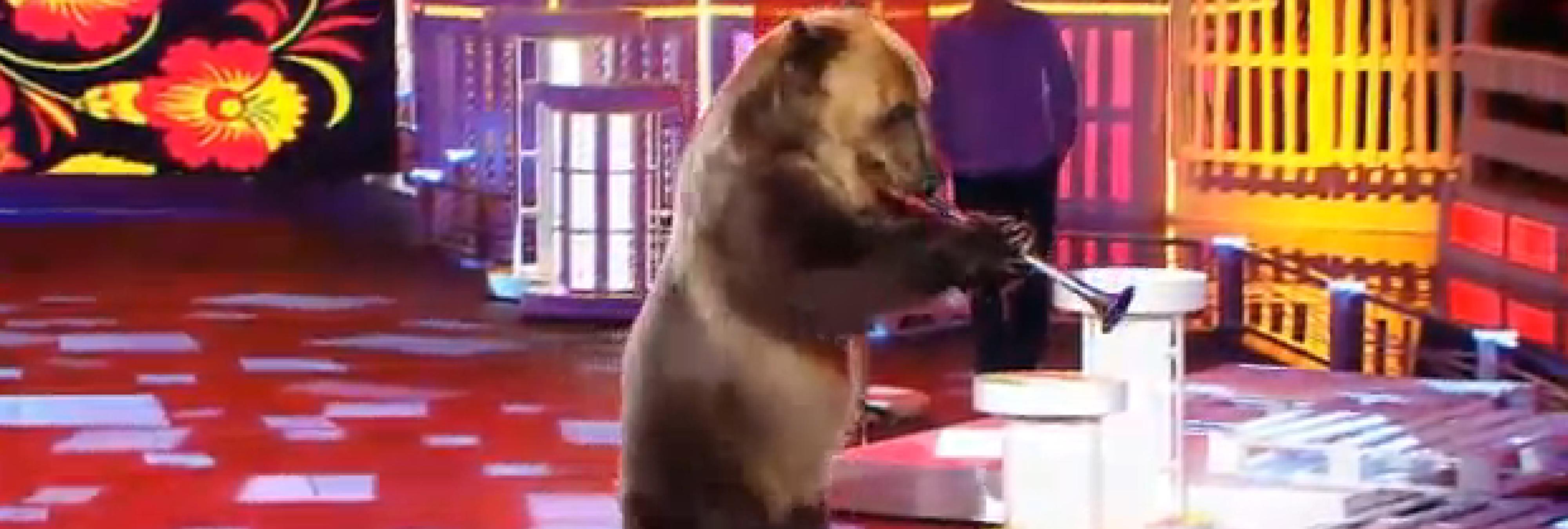 El oso trompetista de '¡Vaya fauna!', de los animales más explotados en España