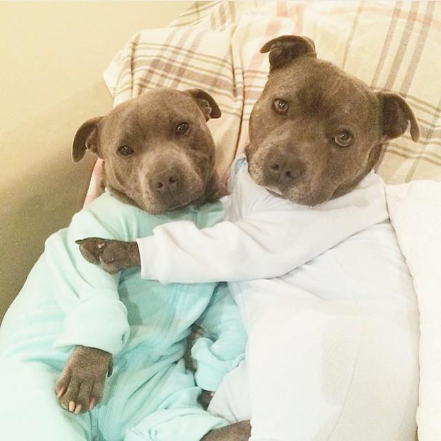 Abrazaditos en pijama