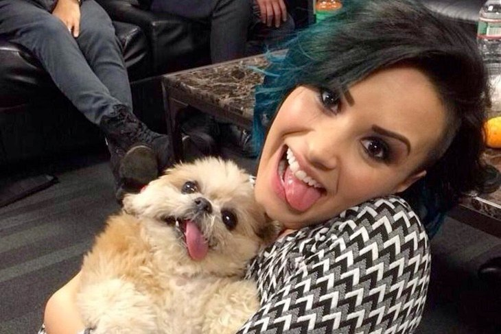Demi Lovato y Marnie the dog