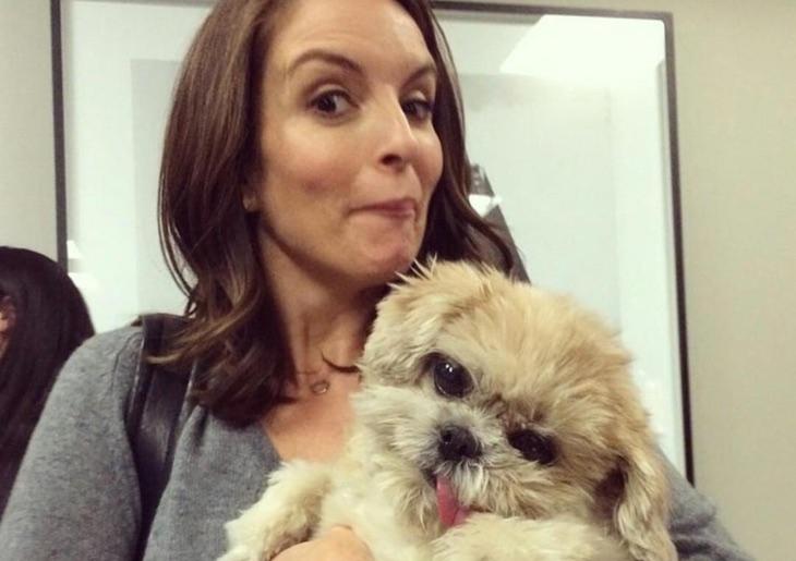 Tina Fey y Marnie the dog