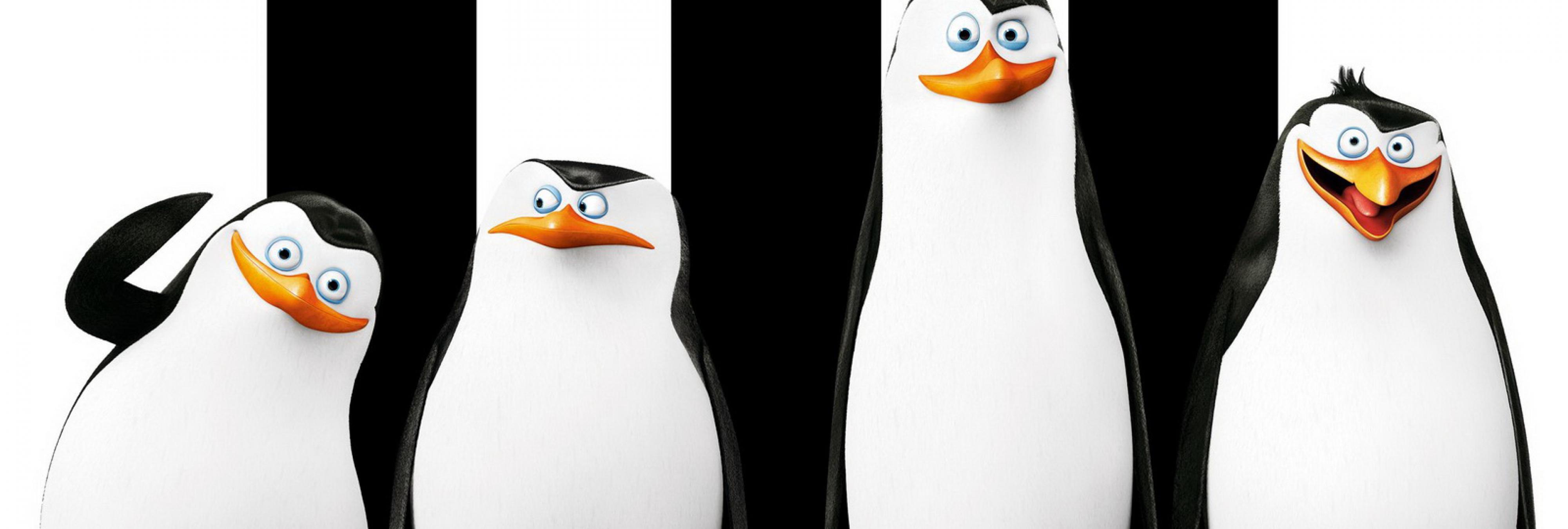 El adorable momento en que cinco pingüinos disimulan su fuga del zoo