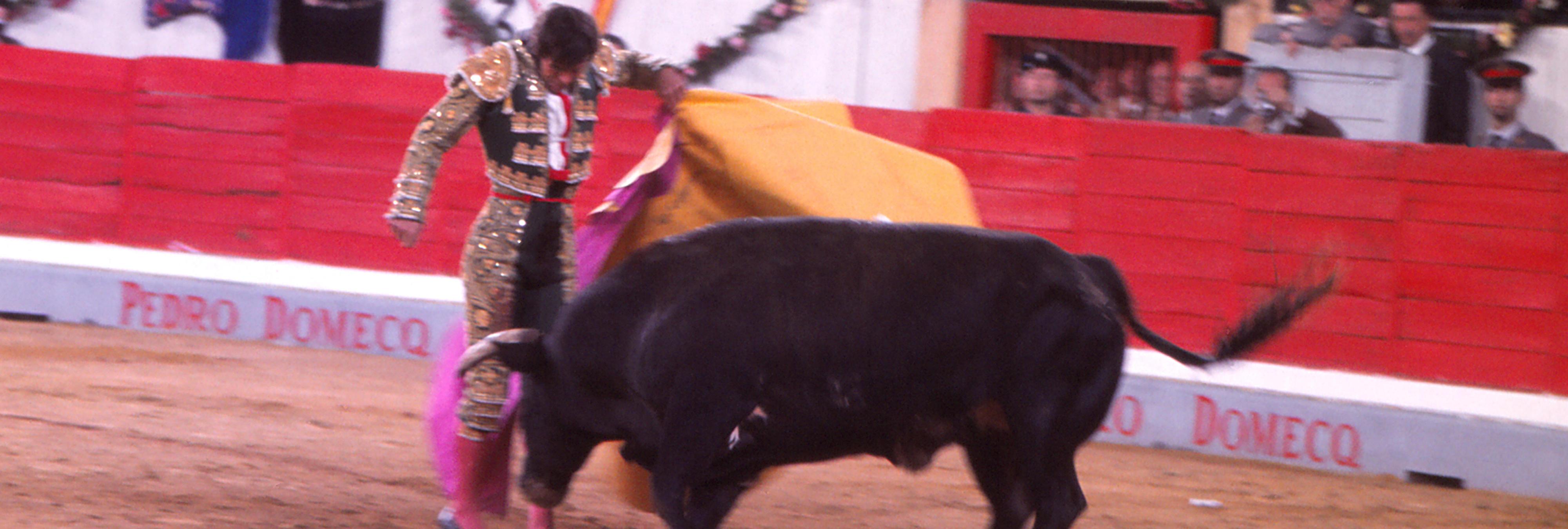 'El Córdobes', nuevo torero en recibir la Medalla de las Bellas Artes