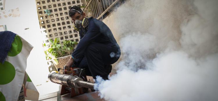 Hay lugares, como Venezuela, donde han fumagado las casas para matar a los mosquitos