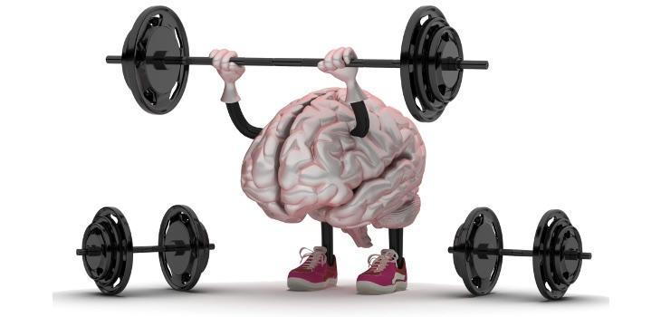 El cerebro no es de plástico, es una expresión hecha