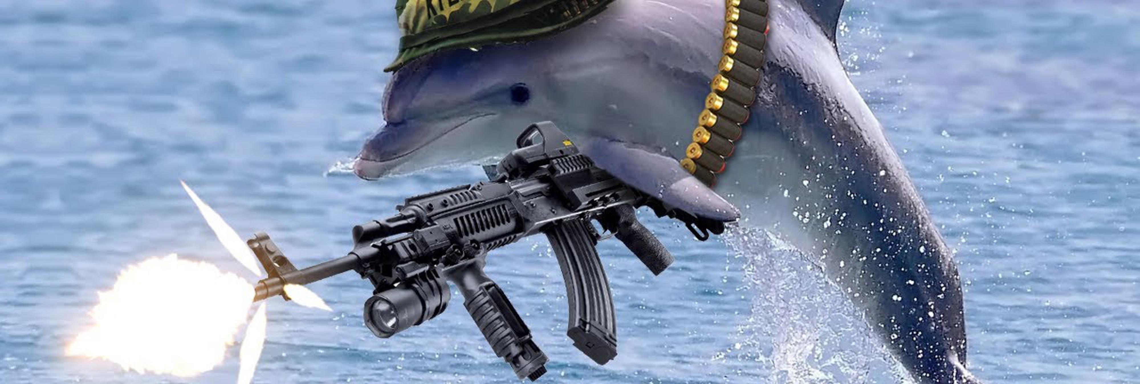 ¿Qué hace un delfín muerto en la Casa de Campo? Desvelamos las principales hipótesis