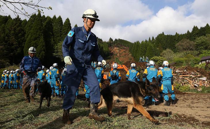 Perro de rescate en Japón