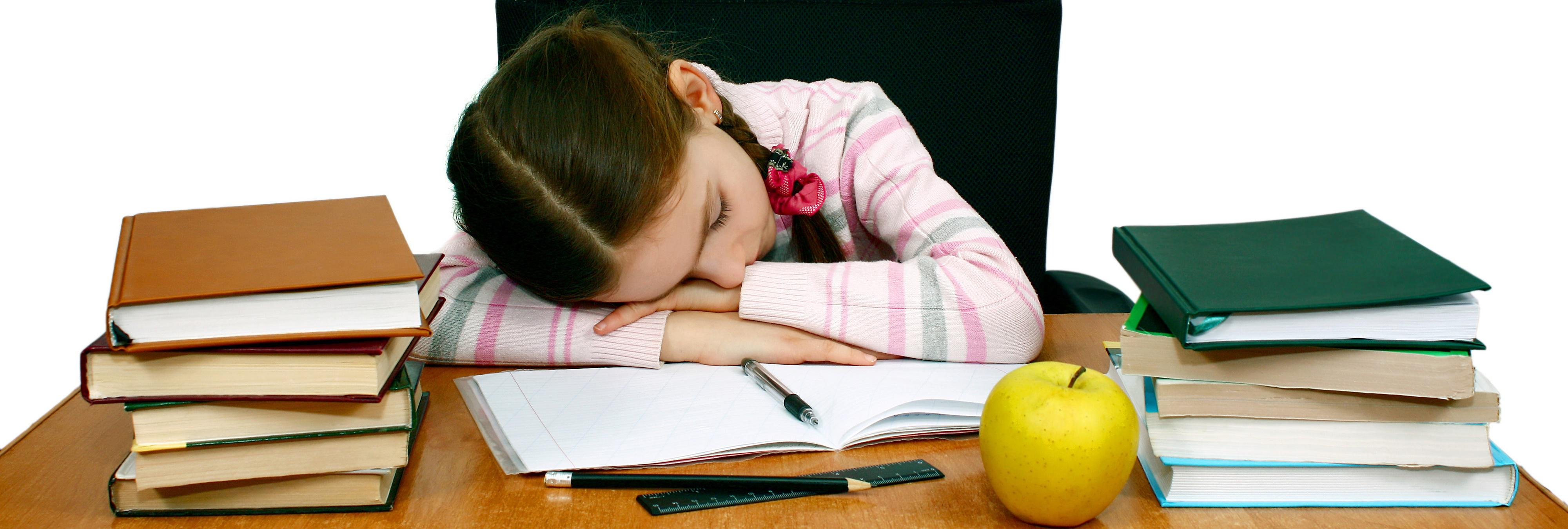Vuelve el dilema: deberes, ¿sí o no?