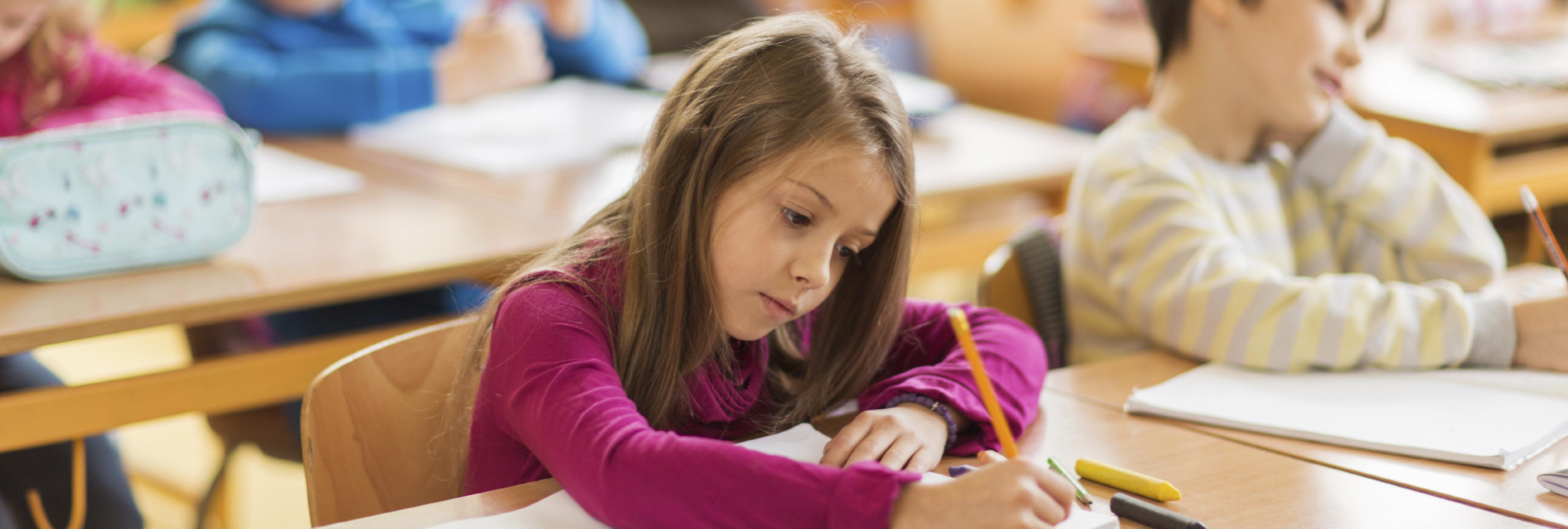 ¿De verdad necesita el Estado colegios concertados?