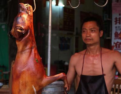 Crece la oposición en China contra el festival de carne de perro más grande del mundo