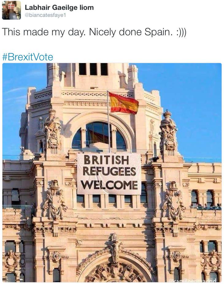 ¡Me has alegrado el día, España!