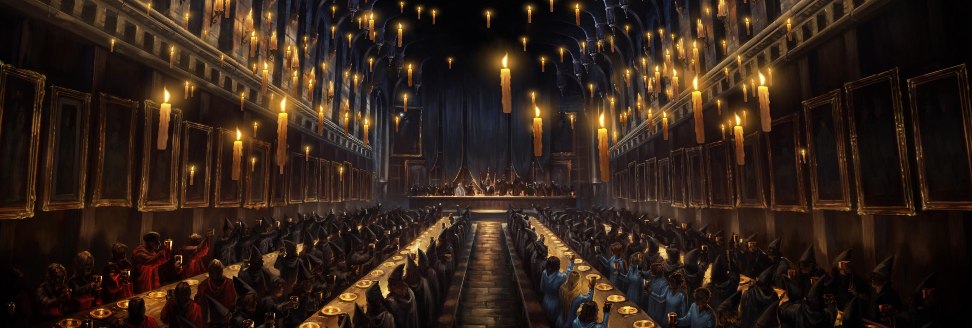 Se gasta 15.600 euros en transformar su salón como si fuera Hogwarts y el resultado es muy cutre