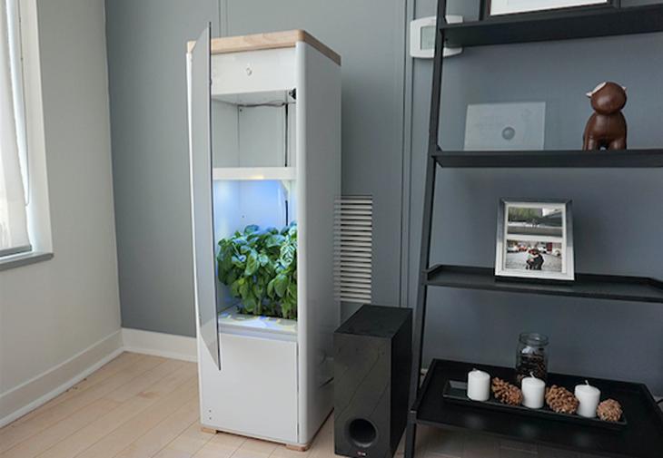 Grobo: el invernadero para cultivar marihuana