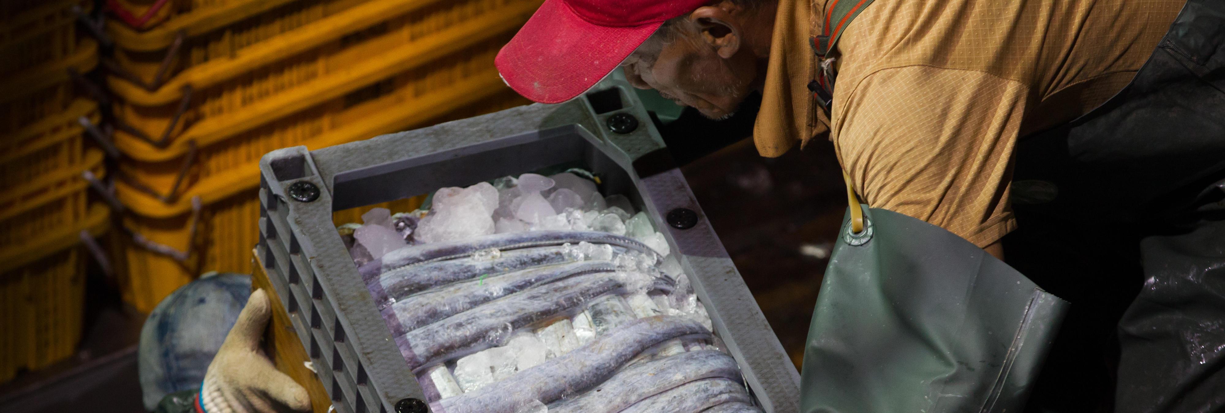 La policía detiene a 14 personas por vender marisco radioactivo de Fukushima