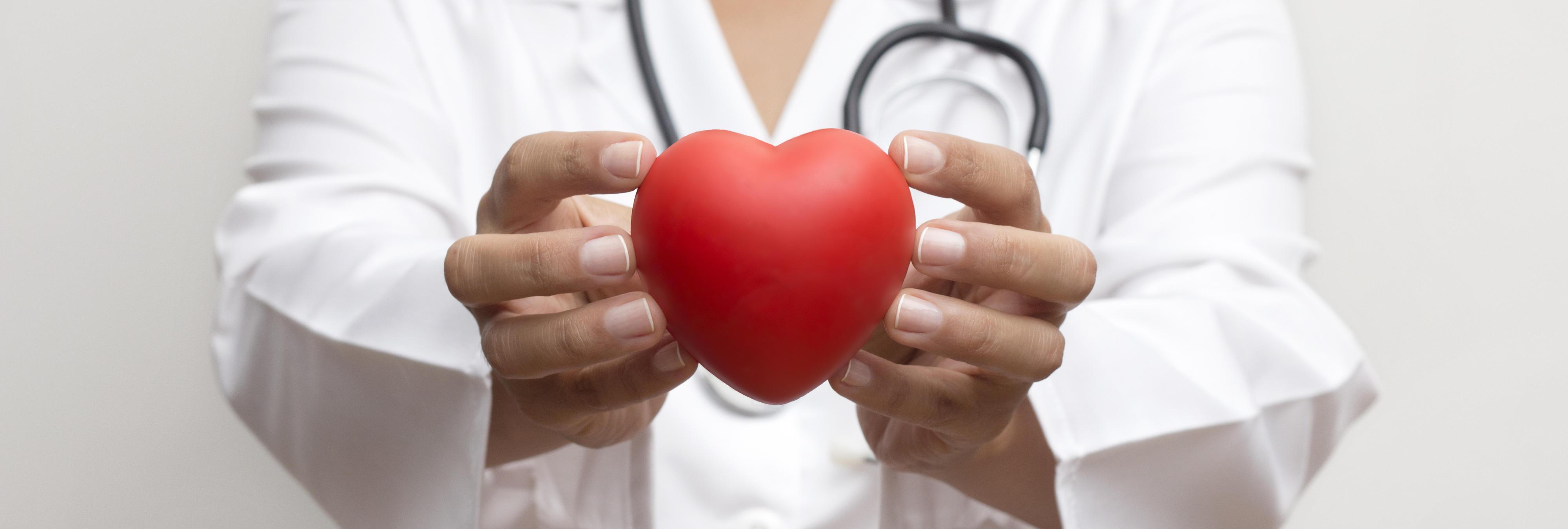 Una nueva ley convierte a todos los habitantes de Países Bajos en donantes de órganos