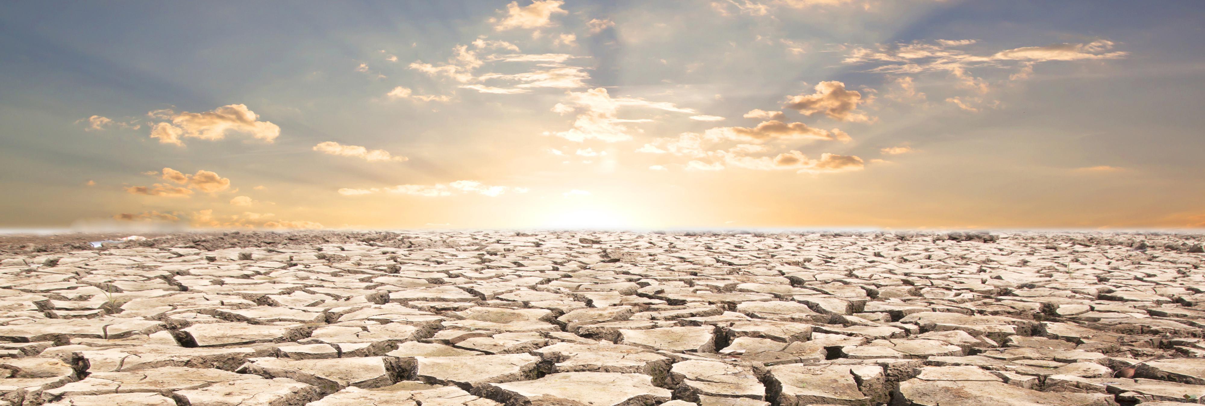 Encuentran la solución a la sequía mundial