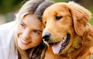 Las mascotas podrán ser enterradas con sus dueños en Nueva York