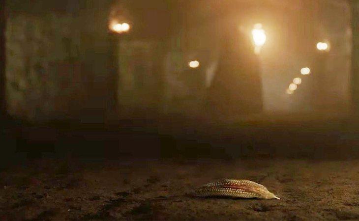 La pluma de Lyanna Stark, de especial significado en el teaser de 'Juego de tronos'