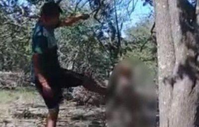 Un joven cuelga y mata a palazos a su perra porque no le dejaba dormir