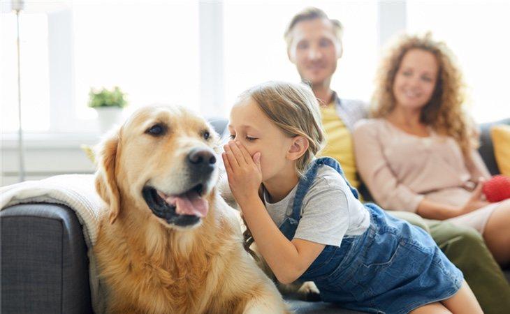 Hablar con tu mascota te hace más inteligente que la media