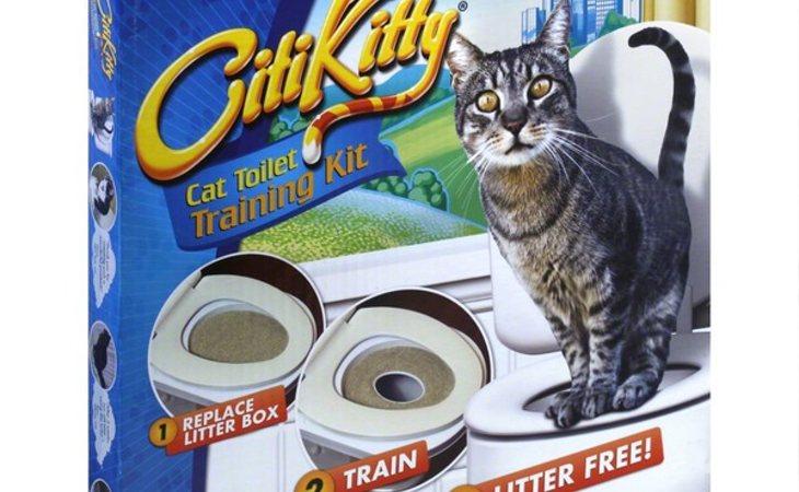 CitiKitty enseña a las mascotas a ir al baño del mismo modo que los humanos
