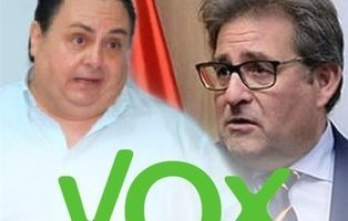 El Presidente de VOX en Las Palmas es condenado a prisión y su coordinador es cesado por amenazas