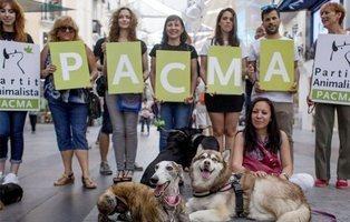El programa electoral de PACMA: no es solo un partido animalista