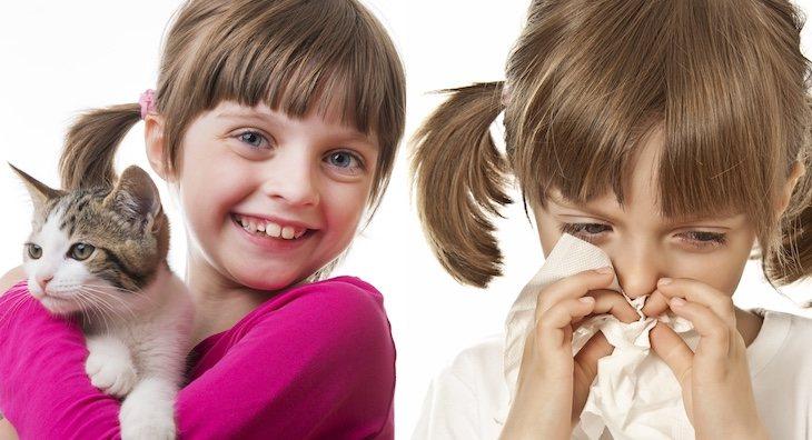 Reduce el riesgo de padecer alergias