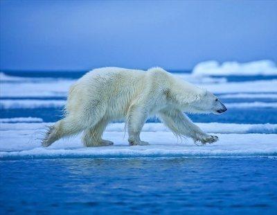 La NASA alerta: el calentamiento global multiplica por 10 su velocidad de avance