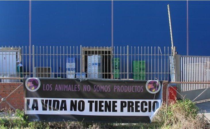 Uno de los carteles reivindicativos de Save Movement en un matadero de Madrid
