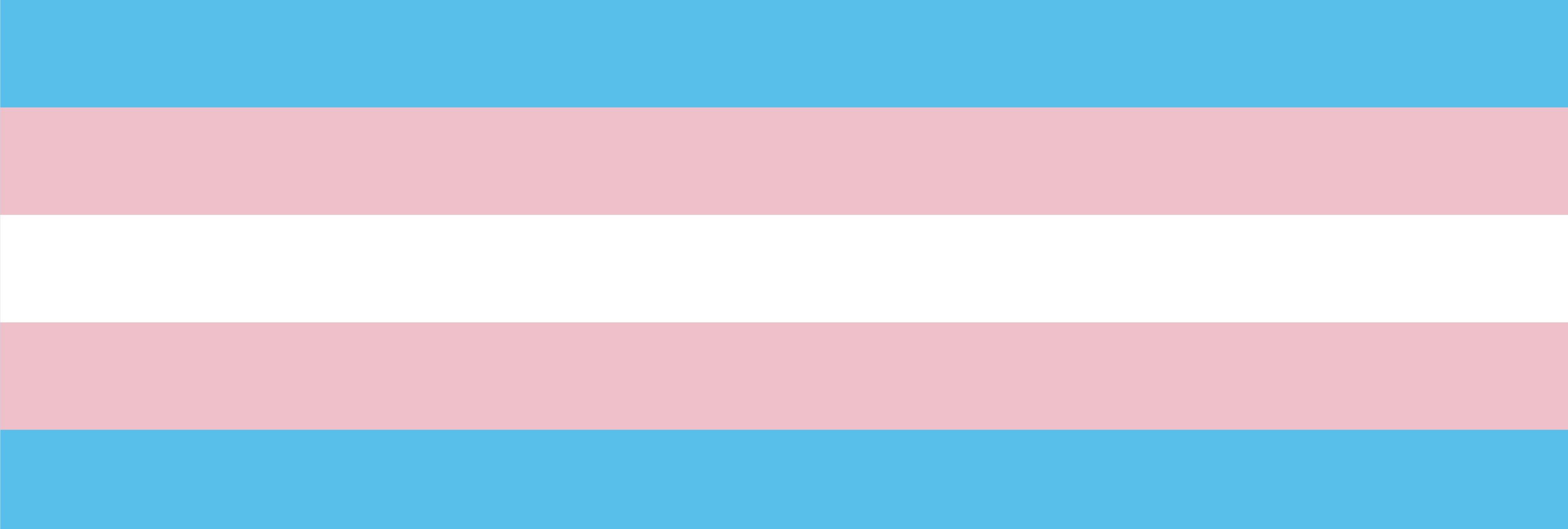 Solidaridad con un chico trans andaluz ante los insultos de un socorrista en una piscina