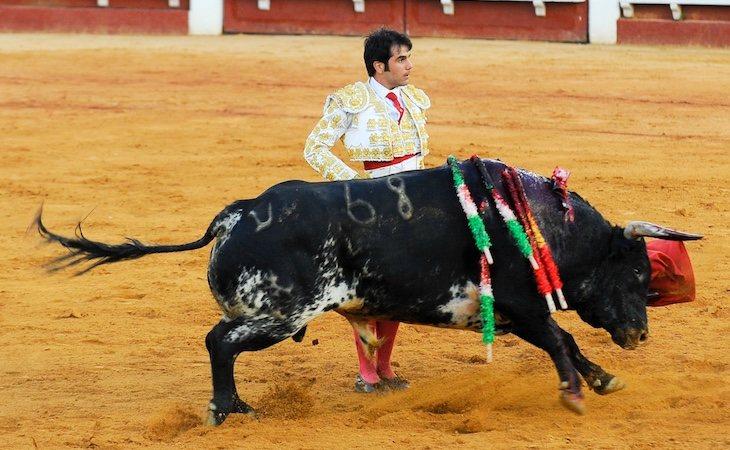 Salvador Vega, fichaje del PP