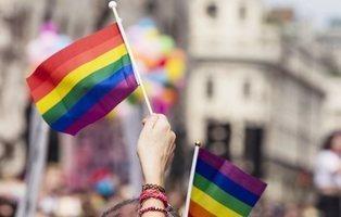 Madrid registró 345 agresiones  al colectivo LGTB en 2018, un 7,5% más que el año anterior