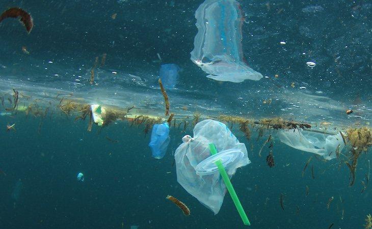 El 80% de los desechos de plástico van a parar al mar