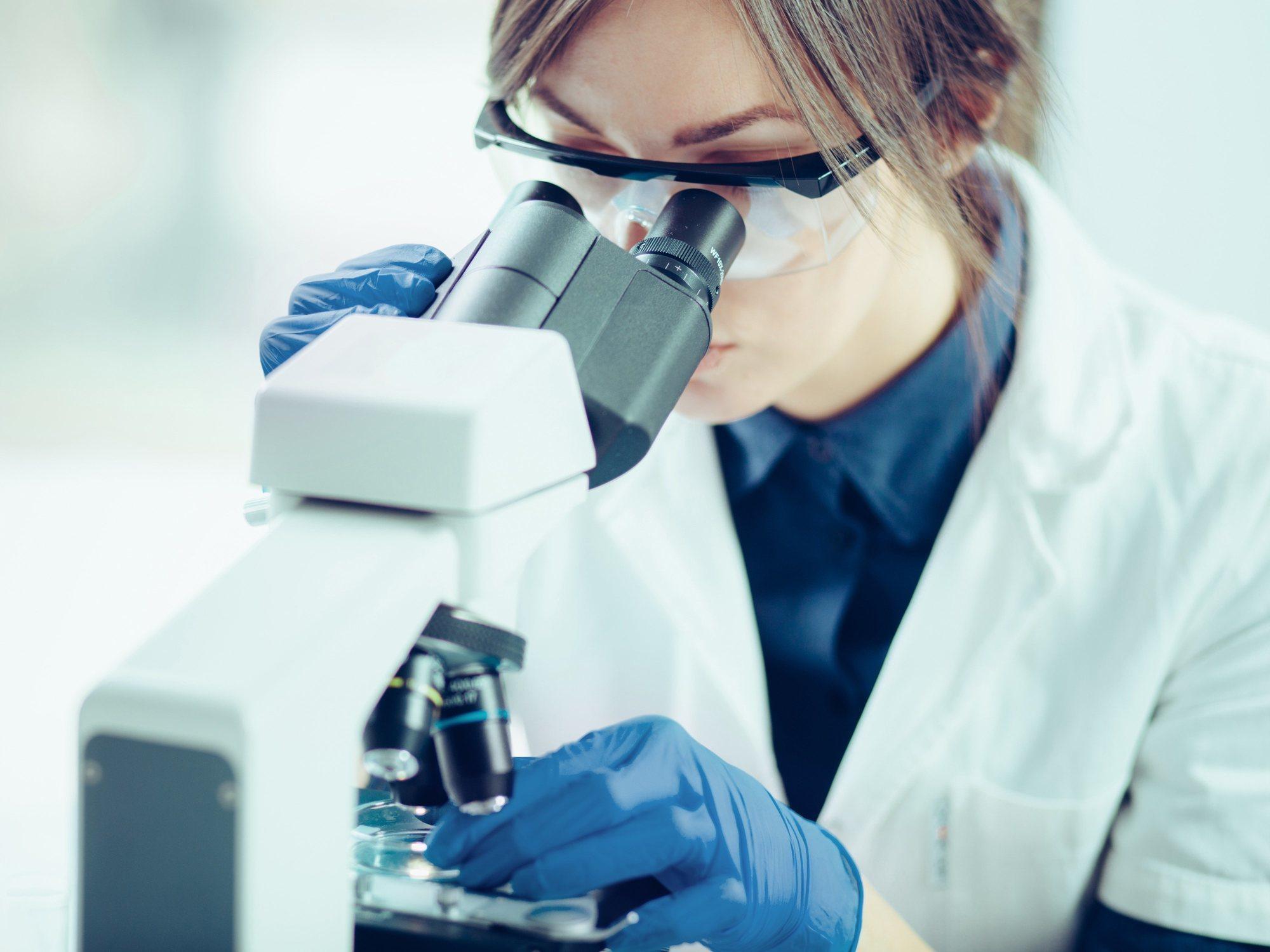 El parásito que invade cerebros humanos se está expandiendo en Hawai