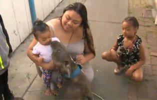 Un bebé se salva de las llamas en EEUU gracias a que su perro le arrastró del pañal