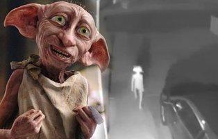 Captan al doble de Dobby ('Harry Potter') en una cámara de seguridad y las redes arden