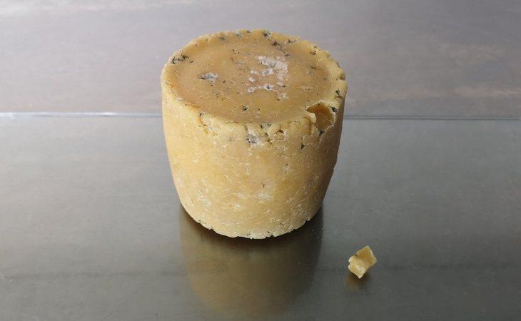 El nuevo queso fabricado con bacterias humanas