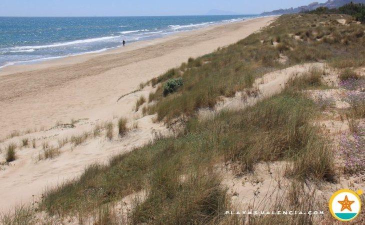 Una mujer fue acosada en la playa de Mareny de Sant Llorenç