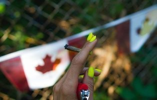 Canadá recauda más de 123 millones de euros con la legalización de la marihuana