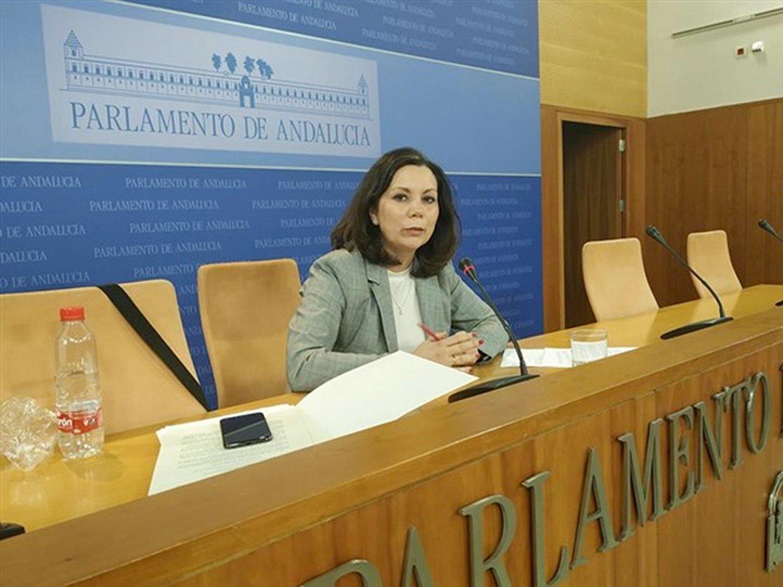 """VOX en Andalucía: """"La mayoría de denuncias de violencia de género no tienen fundamento"""""""