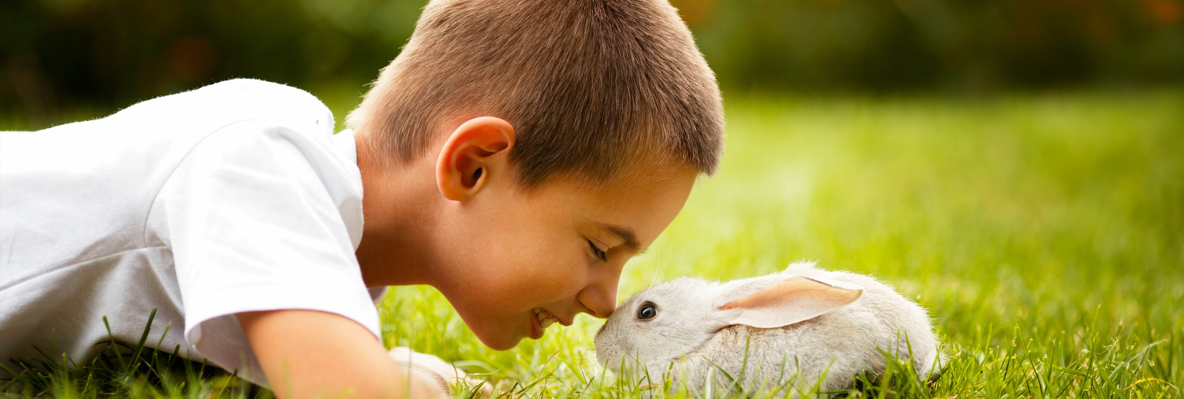 """""""Respeto a los animales"""": Así es la asignatura que ya imparten algunos colegios españoles"""