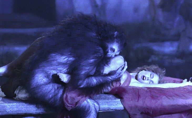 Lucy Westenra y la zoofilia
