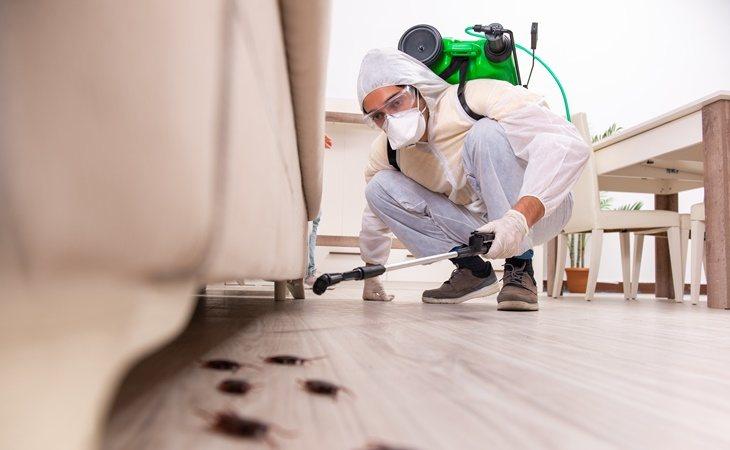 Trabajador llevando a cabo tareas de exterminación de cucarachas