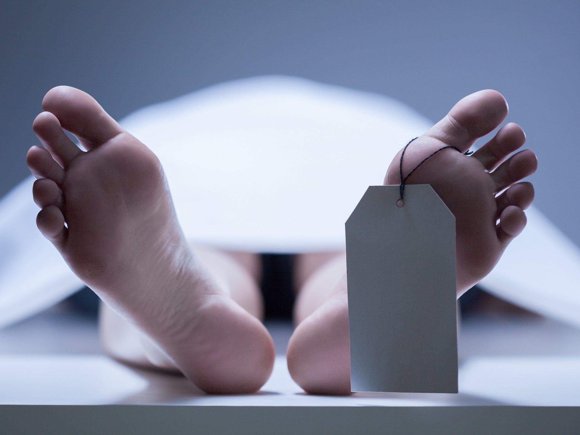 Los macabros juegos de un centro de donación: cuerpos de hombres con cabezas de mujeres