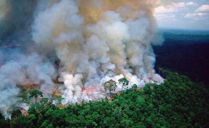La selva Amazónica devorada por las llamas