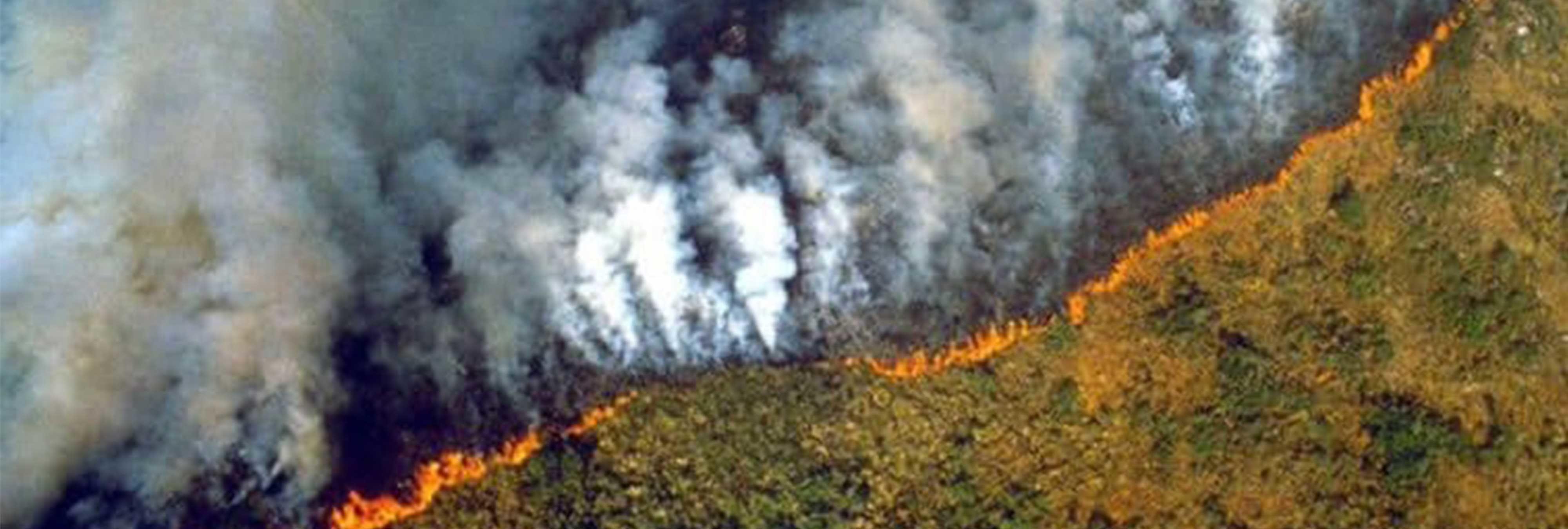 El Amazonas es devorado por las llamas: se quema el pulmón de la Tierra
