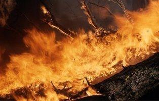 Por qué te afecta el incendio en la Amazonía, aunque vivas en la otra punta del planeta