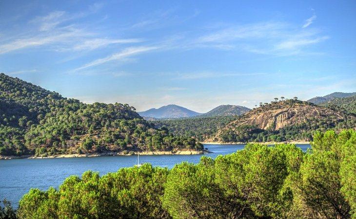 El entorno del Pantano de San Juan esconde auténticos bosques de mediterráneos