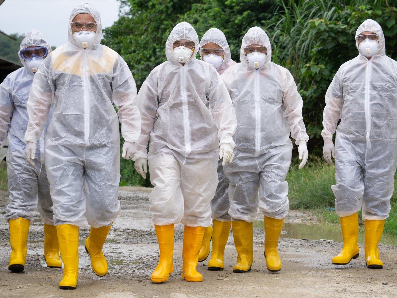 La OMS advierte de una pandemia que podría matar a 80 millones de personas