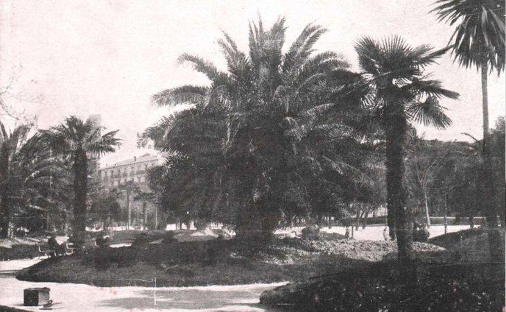 Paseo del Prado engalanado con flora de origen tropical
